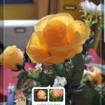 Opiniones de Samsung Galaxy S9 y Galaxy S9 + 13