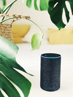 Cómo controlar tu televisor con Amazon Echo y Alexa 2