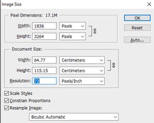 Kako provjeriti veličinu slike DPI Image