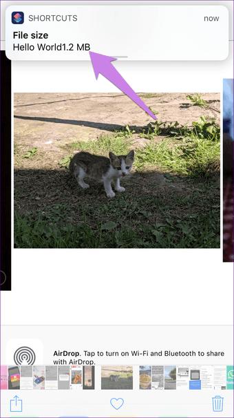 Lihat Ukuran File Foto Di Iphone Ipad Ios 22