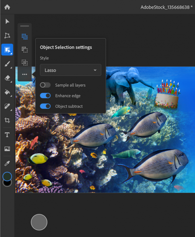 """The new Photoshop object selection tool for iPad """"width ="""" 640 """"height ="""" 779"""