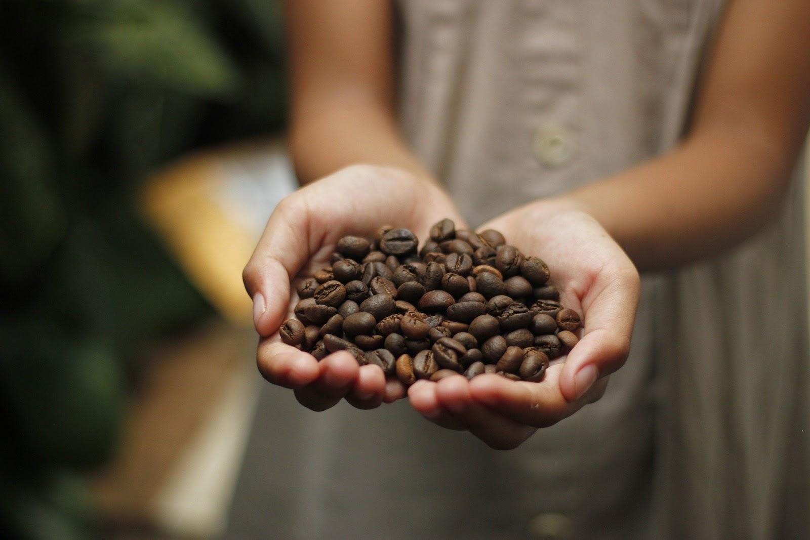 Parhaat vinkit parhaiden cappuccinojen valmistukseen