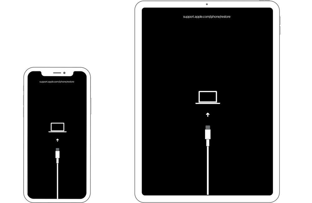 Cách đặt iPhone hoặc iPad của bạn ở chế độ khôi phục 3