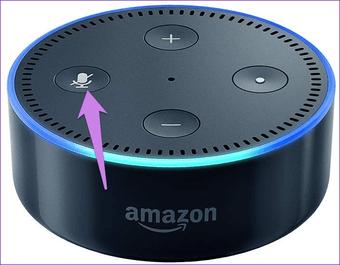 Báo động Echo Alexa không dừng 1