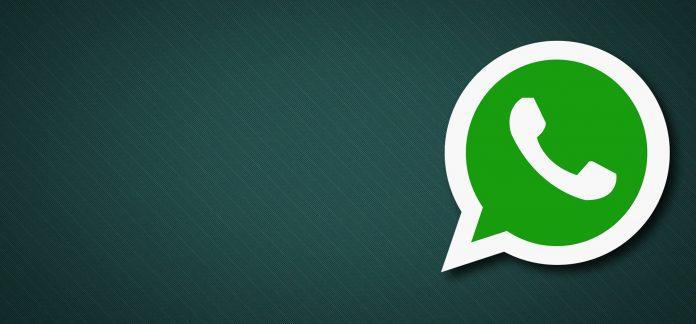Tải về Whatsapp 2.12.304 APK với tính năng sao lưu Google Drive 1