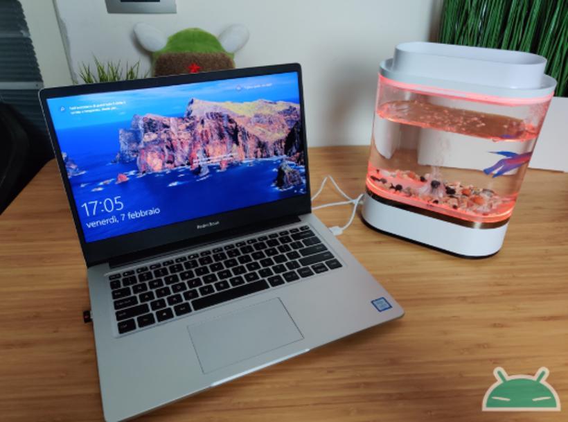 Đánh giá Xiaomi Geometry Mini Lazy Fish Tank: bể cá thiết kế cho bàn làm việc của bạn 4
