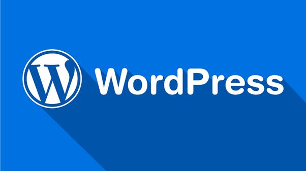 Cách đảm bảo tính bảo mật, tốc độ và tính ổn định của trang web WordPress 1