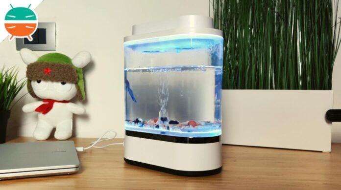 Đánh giá Xiaomi Geometry Mini Lazy Fish Tank: bể cá thiết kế cho bàn làm việc của bạn 1