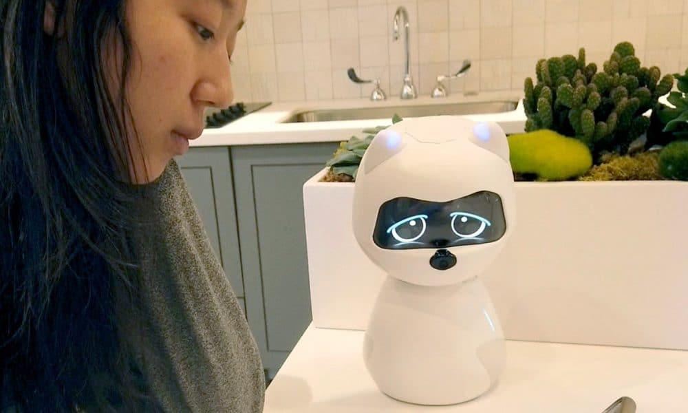 Kiki là một người bạn thân của robot phát triển theo sự tương tác của bạn
