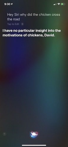 Những điều thú vị mà trẻ em có thể hỏi Siri 2
