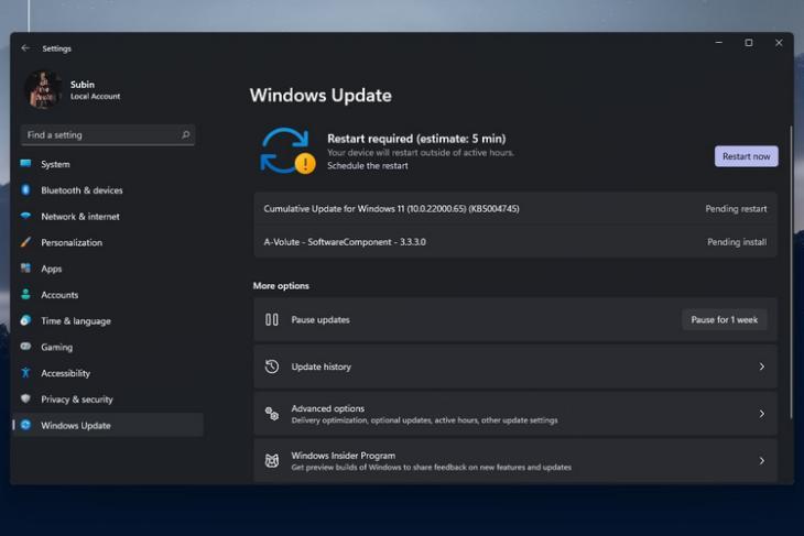 Windows  11 Bản xem trước nội bộ 22000.65